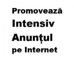 Promoveaza Intensiv Anuntul pe Internet