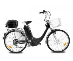250 Watt E-GO! CITY-1