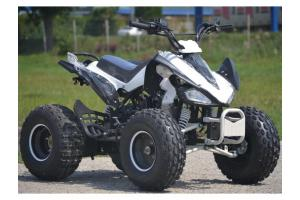 Atv 2017 Raptor125cc>Casca Bonus