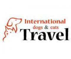 Transport autorizat caini si pisici